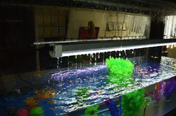 Alfa LED-Lysrør over akvarium